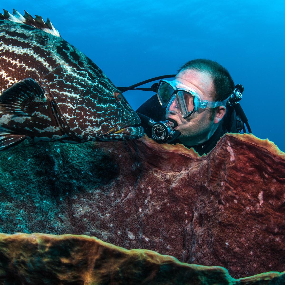 Steve Box underwater