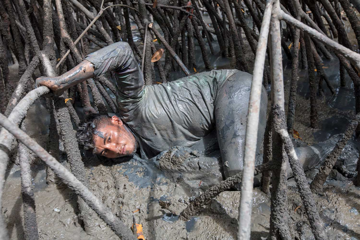 Man in mangrove mud