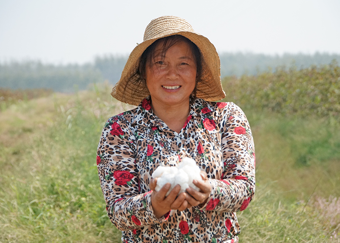 Smiling Chinese woman holding a bundle of organic cotton.