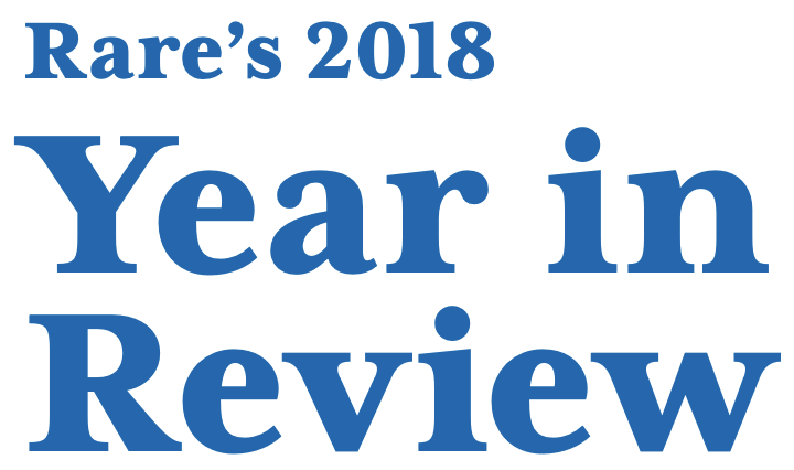 Rare's 2018 Year in Review.
