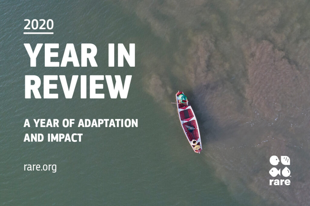 Rare 2020 Year in Review with a background image of a boat.