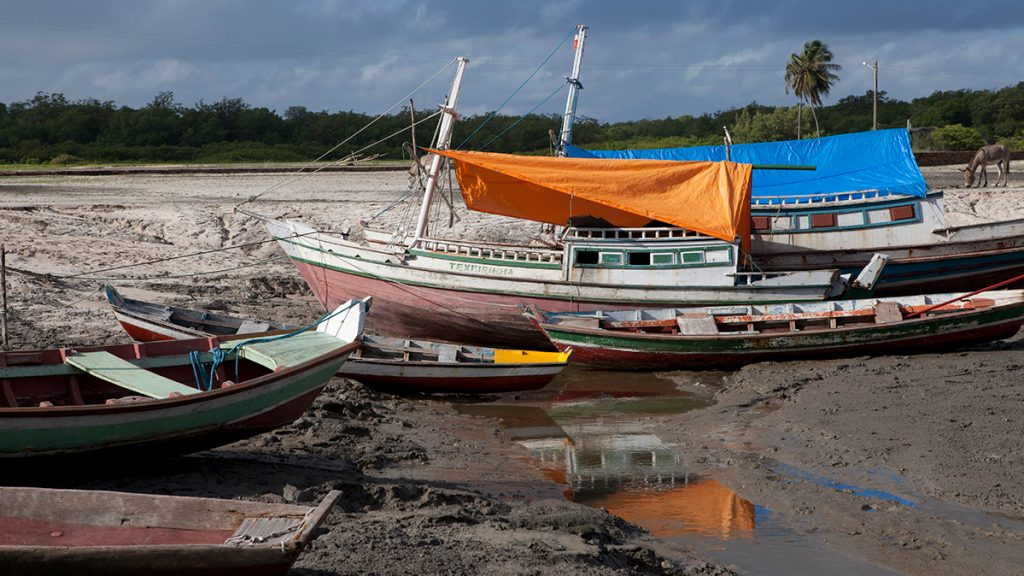Small-scale fishing boats docked in Brazil.