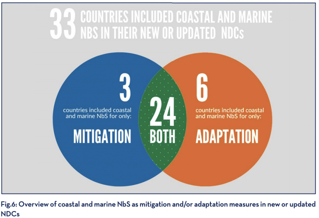 Fig.6: Overview of coastal and marine NbS as mitigation and/or adaptation measures in new or updated NDCs